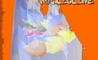 2010_Noccioline-Anna_Maria_Folchini_Stabile